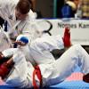Korean Allstyle Jitsu